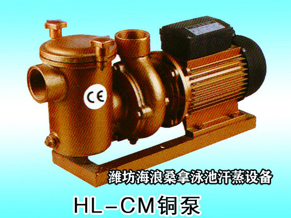 HL-CM铜泵