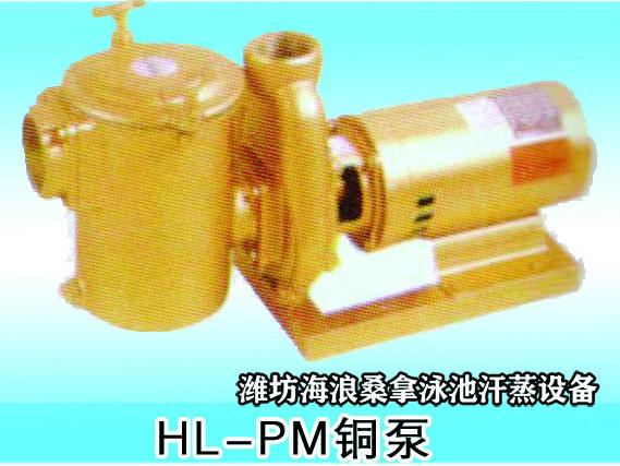 HL-PM铜泵