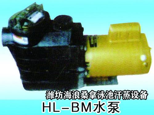 HL-BM水泵